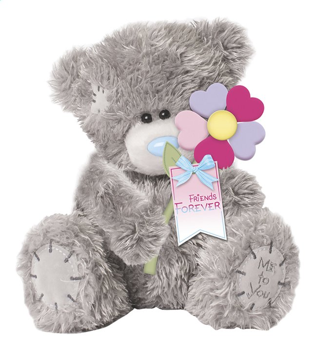 Afbeelding van Me to You knuffel Friends Forever 16 cm from DreamLand