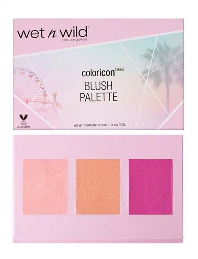 Afbeelding van Wet N Wild Coloricon Blush Palette from DreamLand