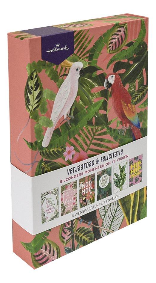 Afbeelding van Hallmark wenskaarten in box - Verjaardag & felicitatie tropical from DreamLand