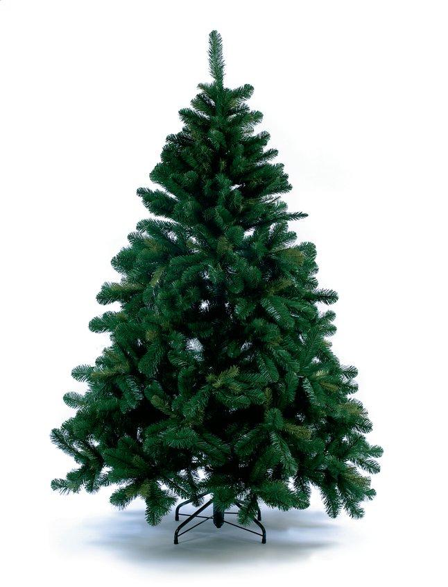 Afbeelding van Kerstboom Alberta Spruce 210 cm from DreamLand