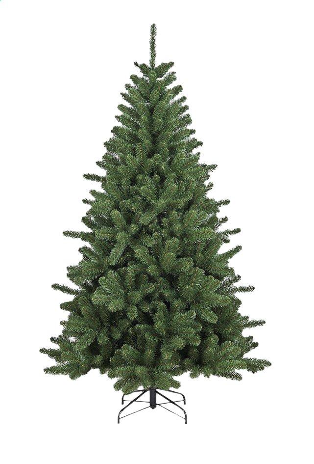 Sapin De Noël Colorado 210 Cm