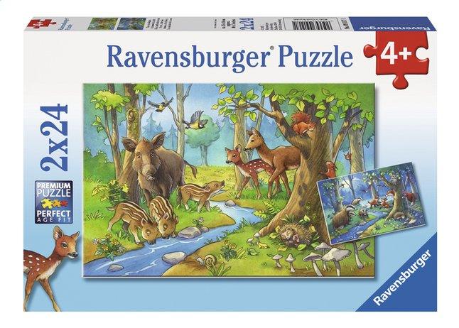 Afbeelding van Ravensburger Puzzel 2-in-1 Dieren uit het bos from DreamLand