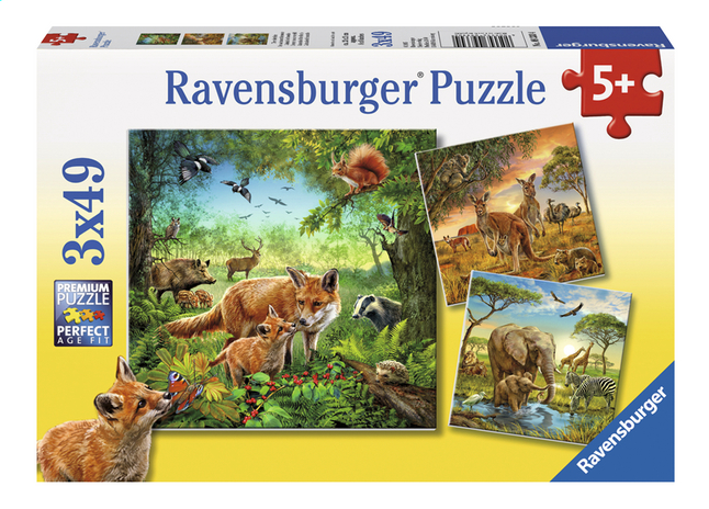 Afbeelding van Ravensburger Puzzel 3-in-1 Dieren van de wereld from DreamLand