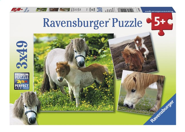 Afbeelding van Ravensburger Puzzel 3-in-1 Lieve pony's from DreamLand