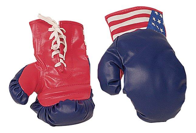 Image pour Gants de boxe à partir de DreamLand