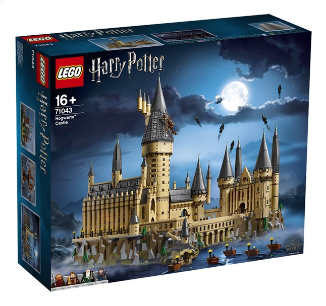 Afbeelding van LEGO Harry Potter 71043 Kasteel Zweinstein from DreamLand