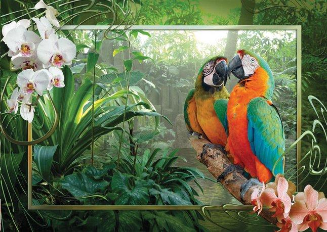 Afbeelding van Ravensburger puzzel Papegaaien in de jungle from DreamLand