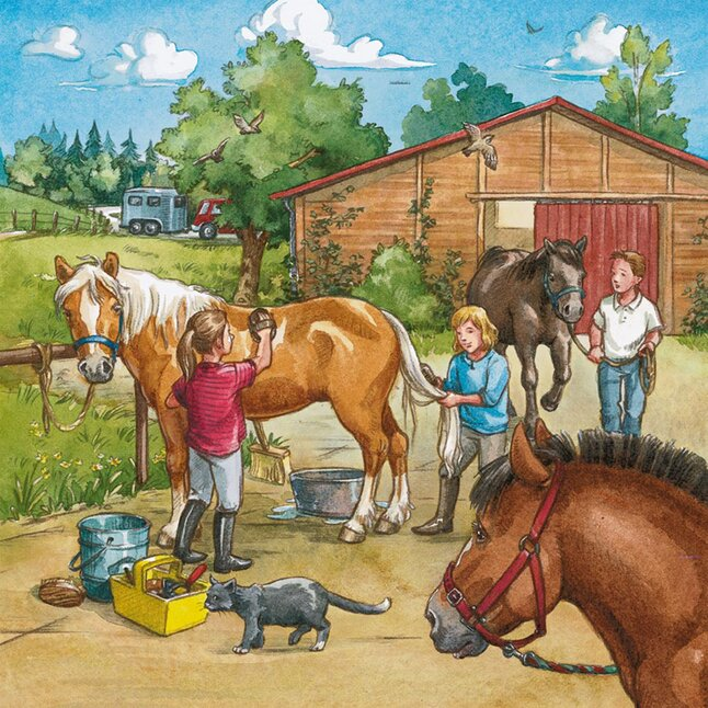 Afbeelding van Ravensburger 3-in-1 puzzel Manege from DreamLand