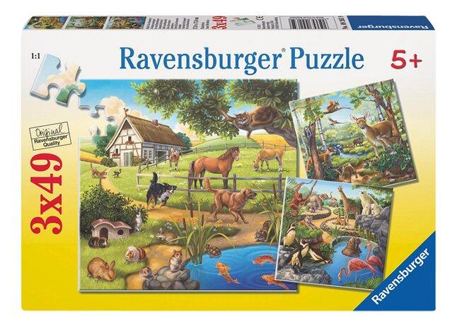 Image pour Ravensburger puzzle 3 en 1 Animaux à partir de DreamLand