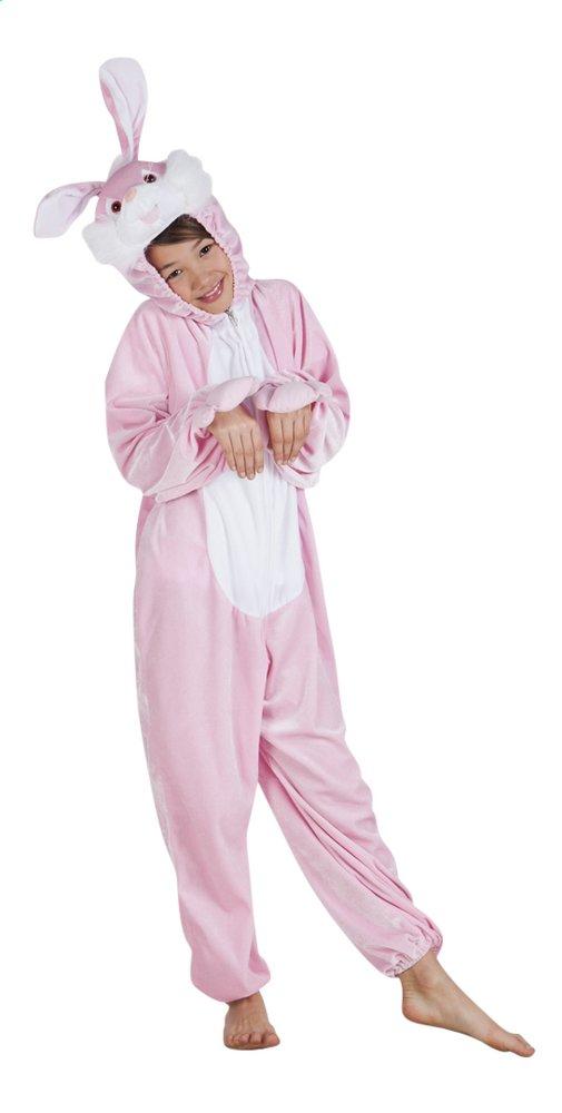 Afbeelding van Verkleedpak konijn kind from DreamLand