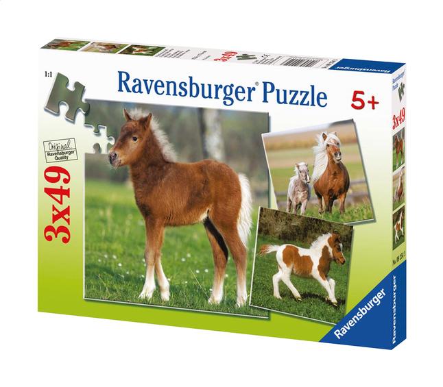 Image pour Ravensburger puzzle 3 en 1 L'amitié des poneys à partir de DreamLand