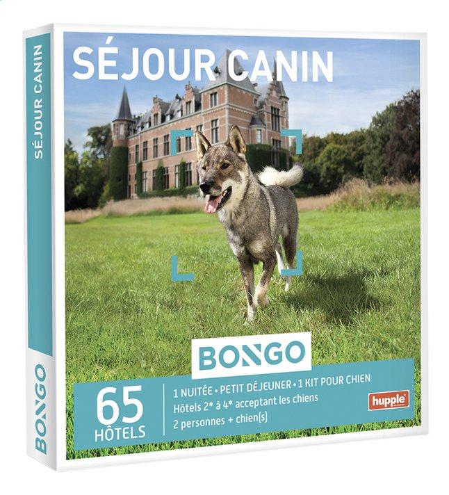 Image pour Bongo Séjour Canin à partir de DreamLand