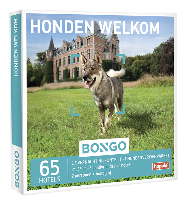 Afbeelding van Bongo Honden welkom from DreamLand
