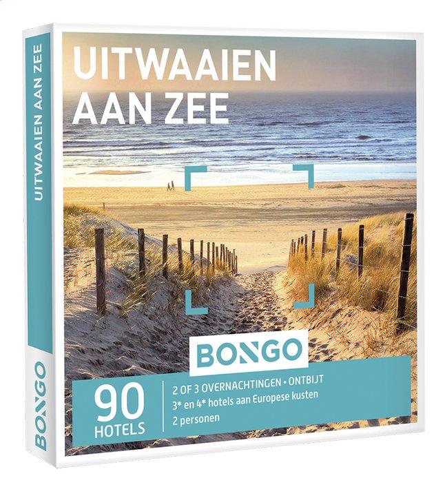 Afbeelding van Bongo Uitwaaien aan zee from DreamLand