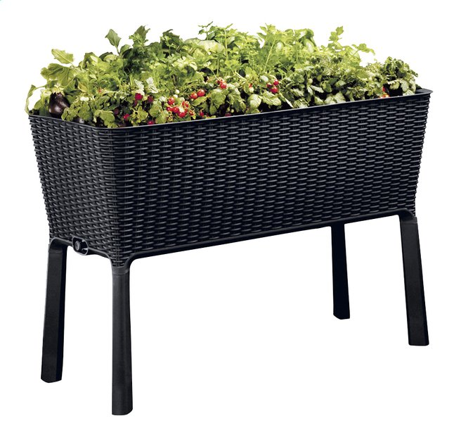 Afbeelding van Keter Kweektafel Easy Growing grafietgrijs from DreamLand