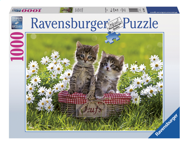 Afbeelding van Ravensburger puzzel Picknick in de wei from DreamLand