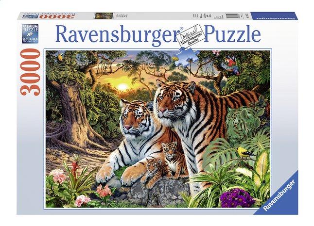 Afbeelding van Ravensburger puzzel Verborgen Tijgers from DreamLand