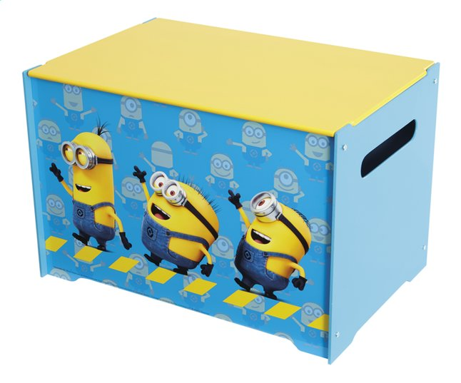 Afbeelding van Hello Home opbergbox Minions Tidy up Time from DreamLand