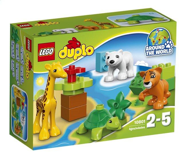 Image pour LEGO DUPLO 10801 Les bébés animaux du monde à partir de DreamLand