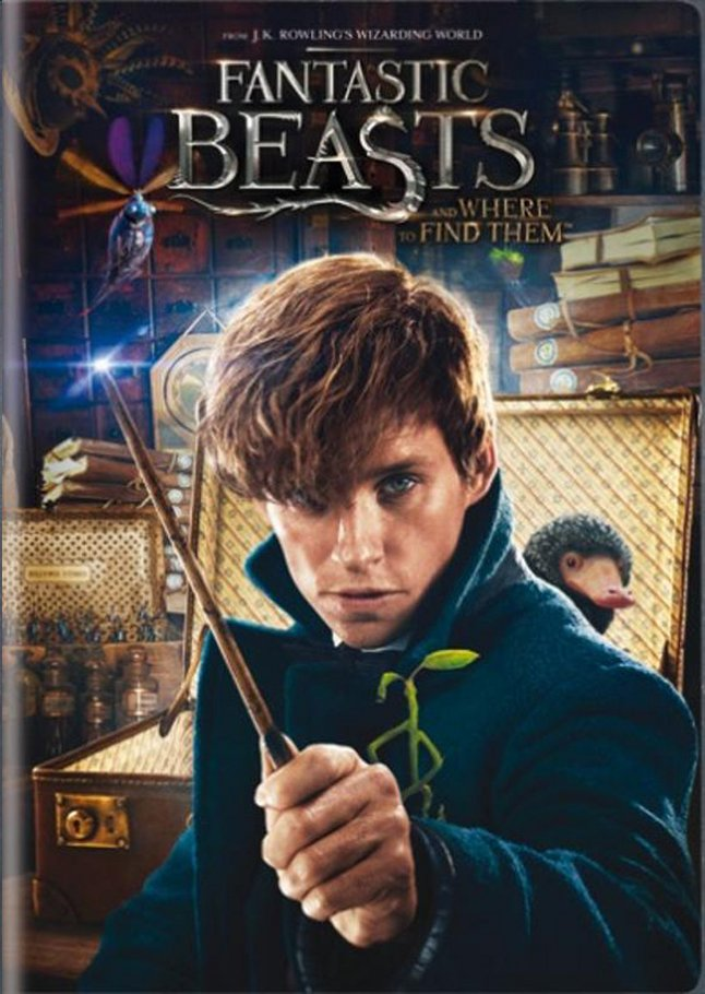 Image pour DVD Fantastic Beasts and Where to Find Them à partir de DreamLand