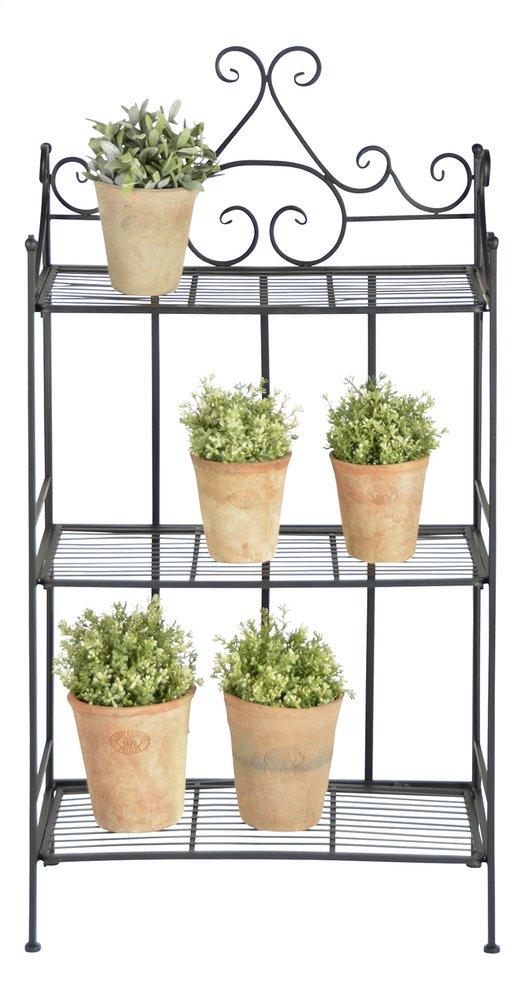 Afbeelding van Esschert inklapbaar plantenrek from DreamLand