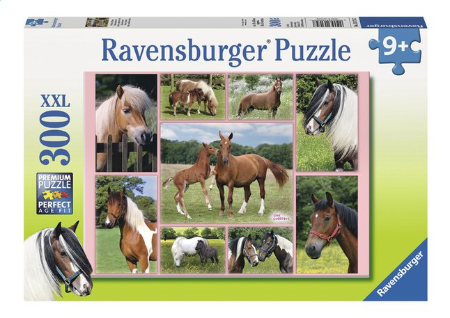 Afbeelding van Ravensburger XXL puzzel Horse Heaven from DreamLand